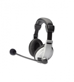 Ednet Stereo Multimedia Headset with microphone